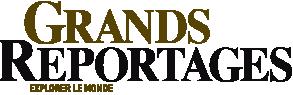 logo-gdsrep