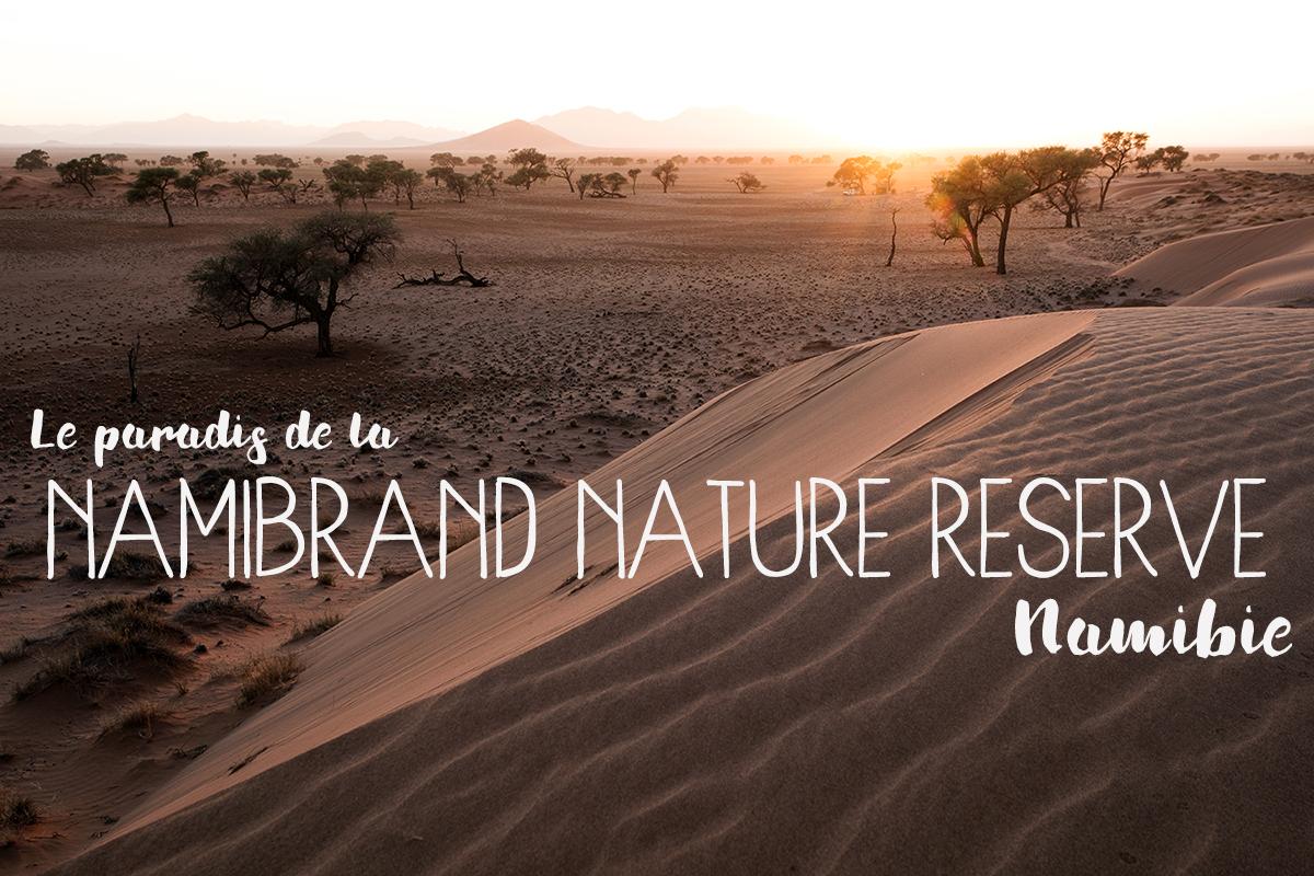 namibrand-reserve-namibie-que-voir