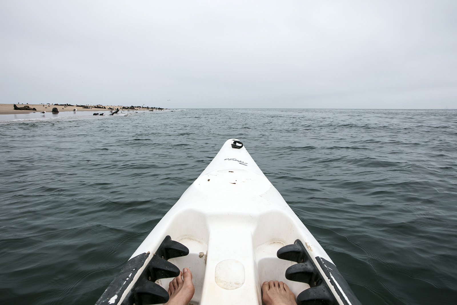 kayak-pelican-point-namibie