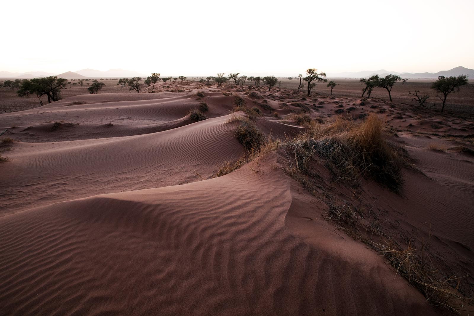 lever-soleil-namibrand