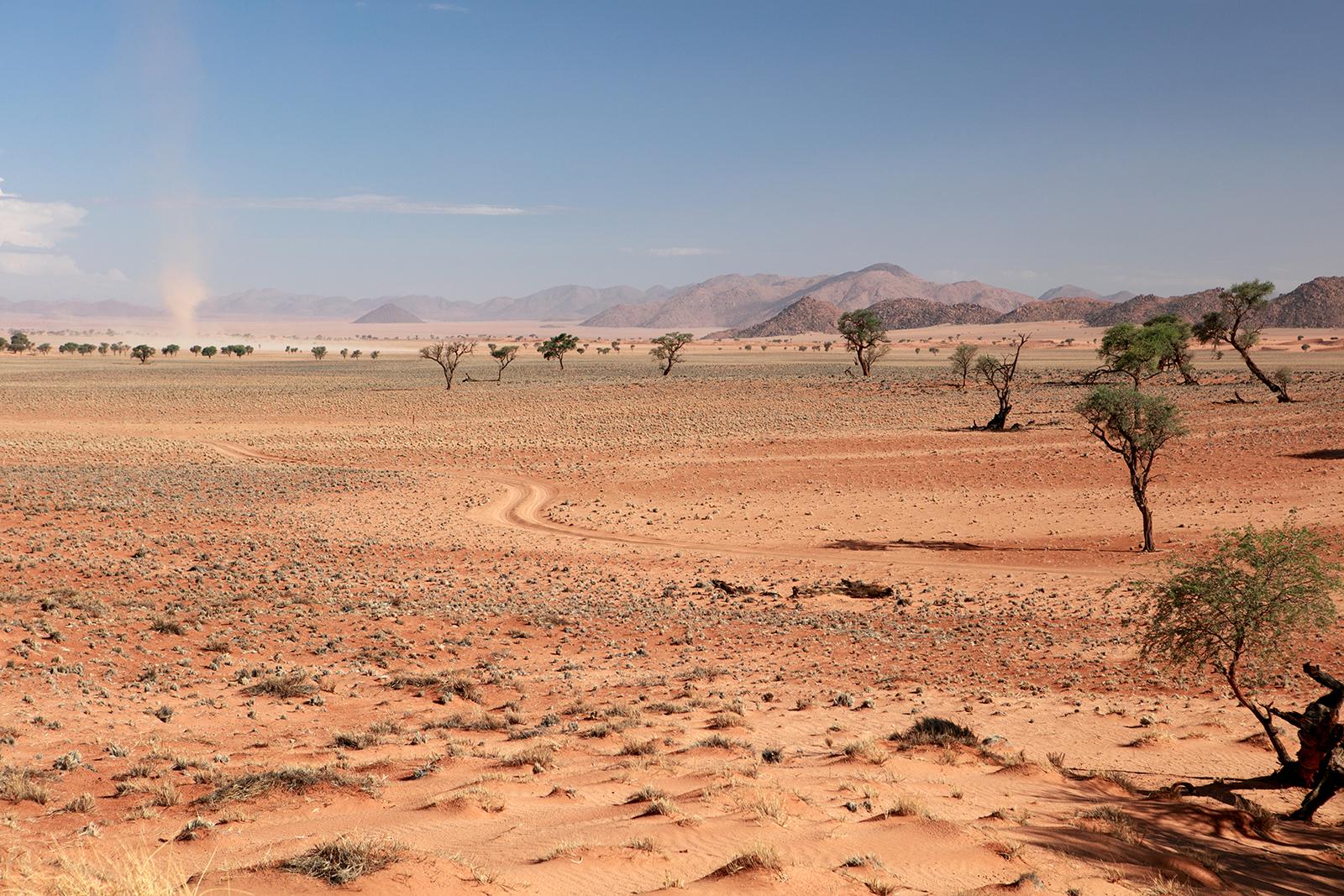 namibrand-savane-namibie-blog