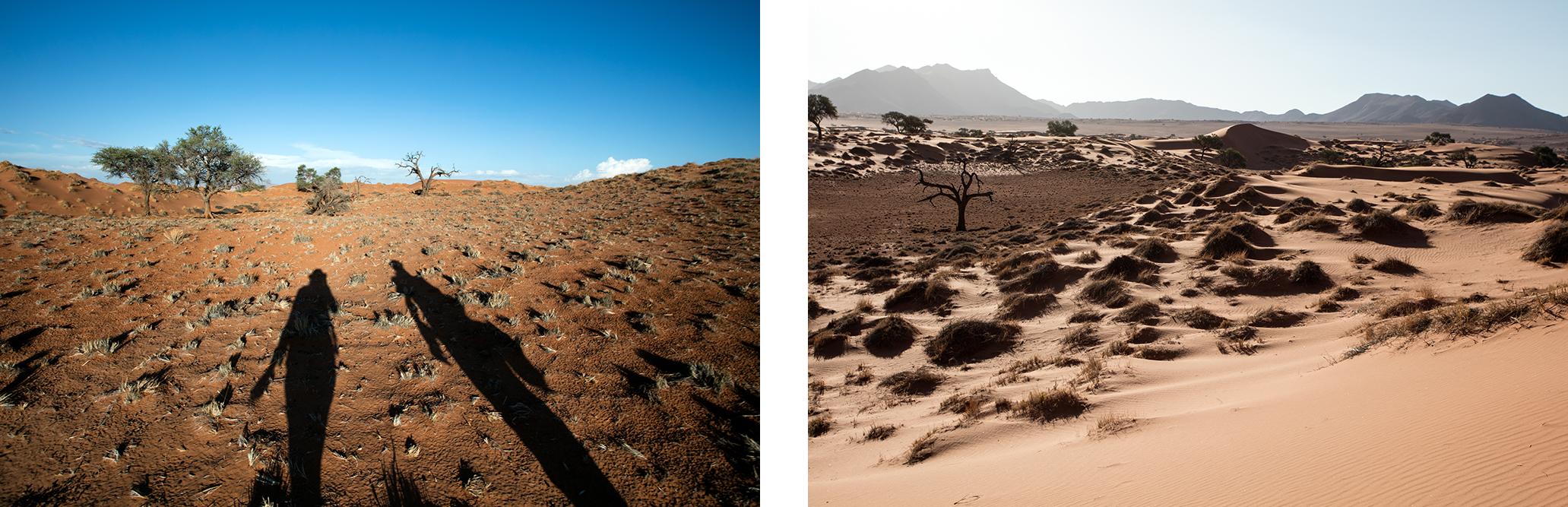 randonnee-namibie-namibrand-blog