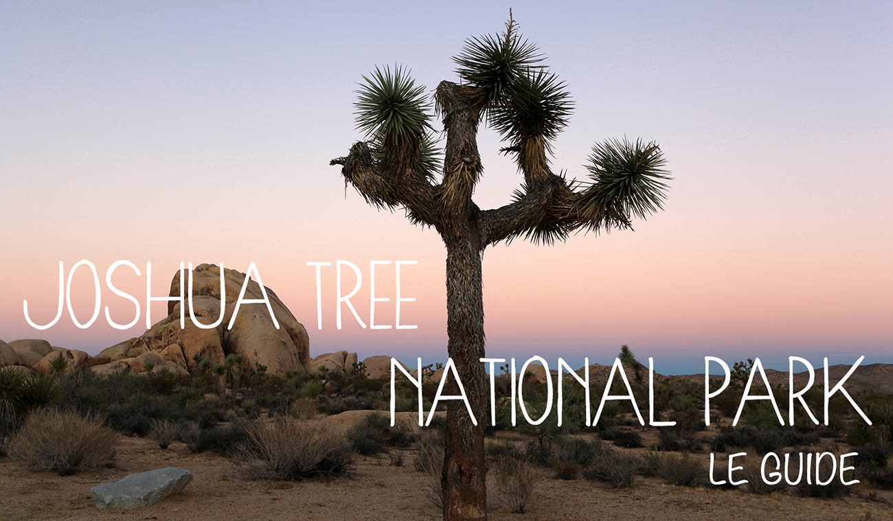 Joshua Tree-guide