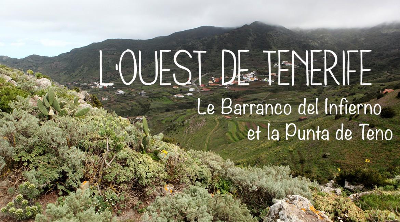 Découverte de l'ouest de Tenerife