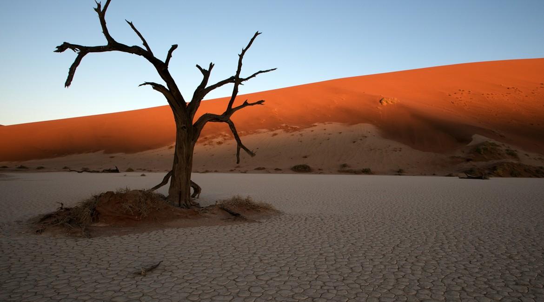 Immersion dans le désert du Namib