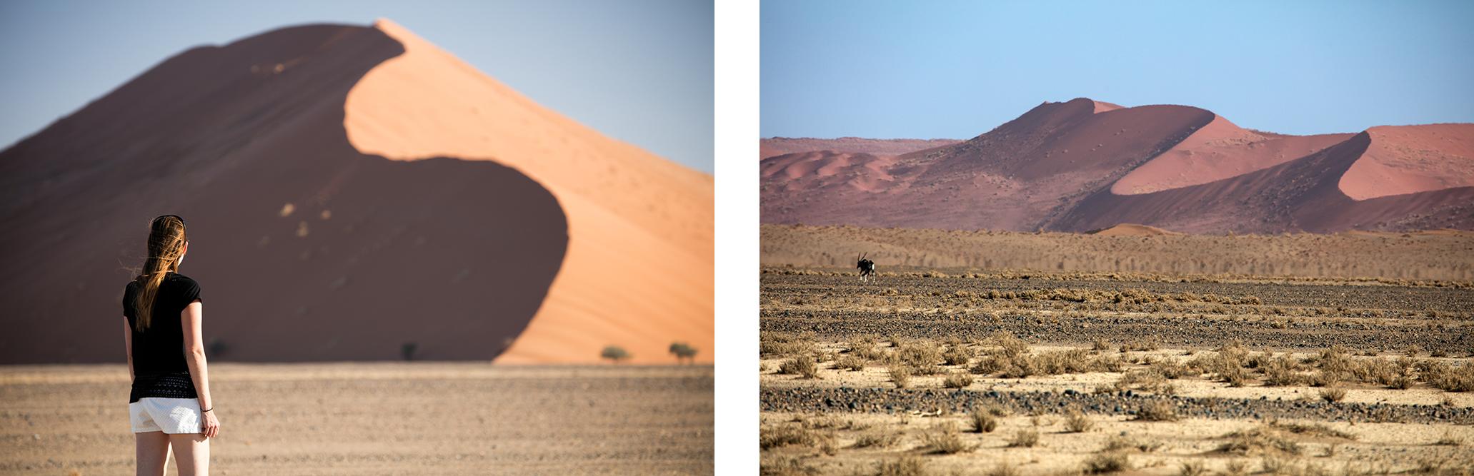 Namib-3