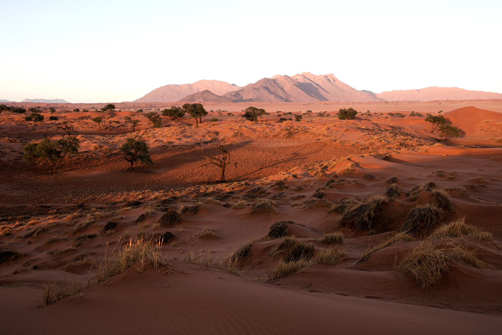 namibrand-namibie-lever-soleil