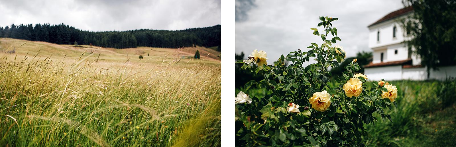 campagne-serbie-paysage