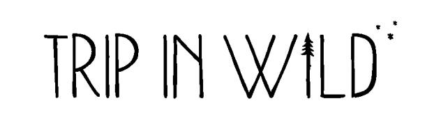 Logo Noir_web