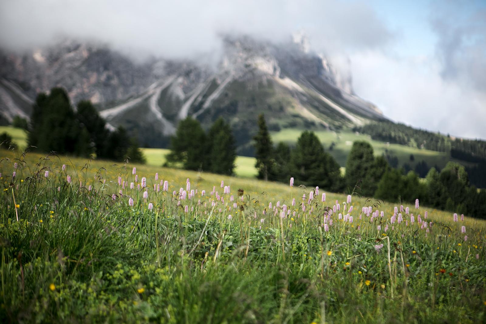 Montagnes Dolomites