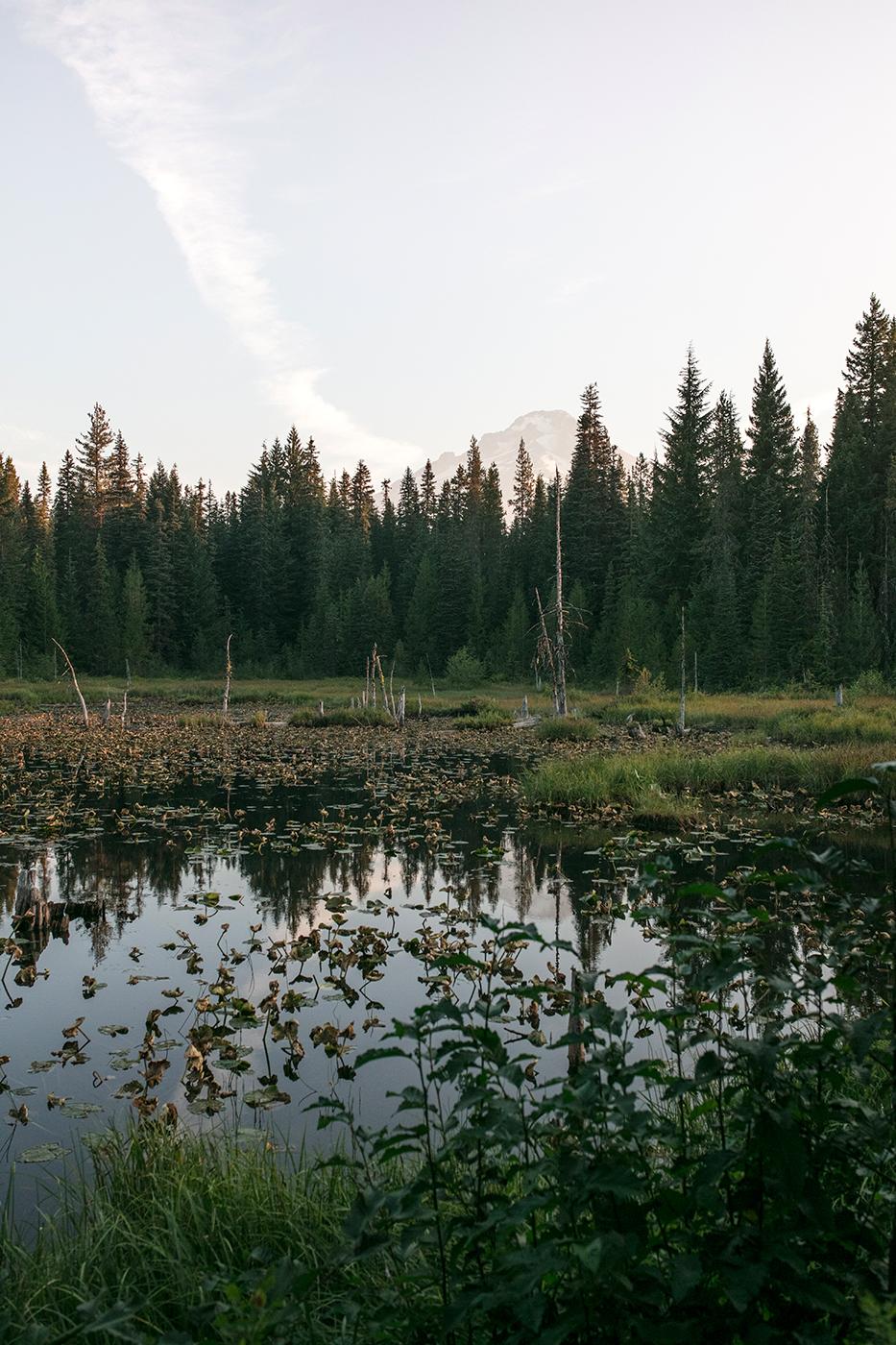 mont Hood lac Trilium vue campground