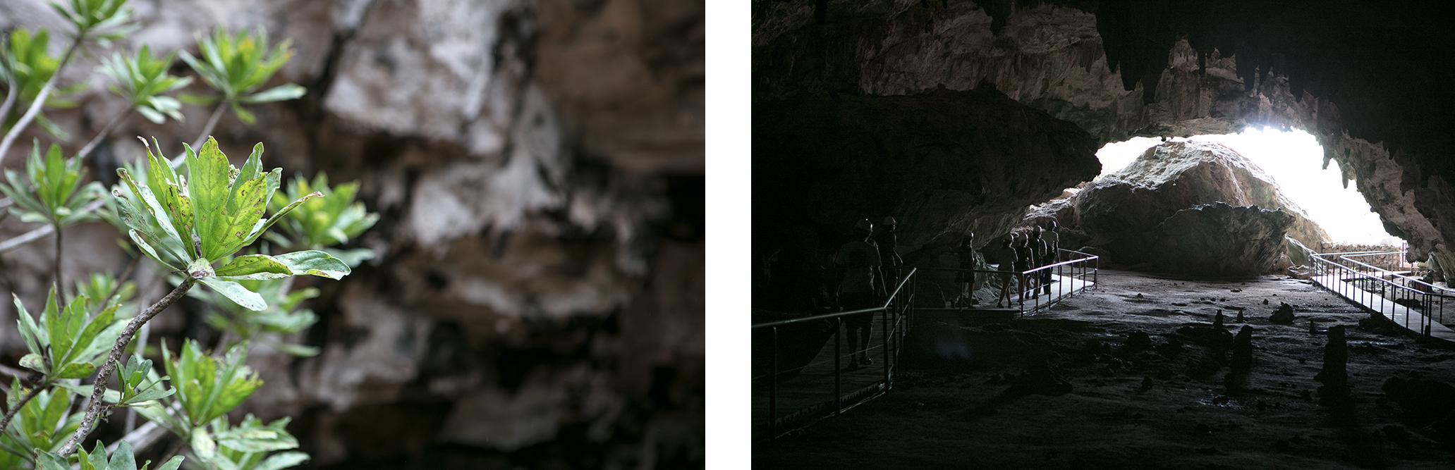 caverne Francois leguat