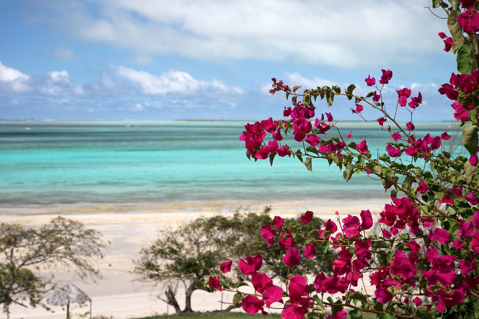 hôtel Rodrigues plage