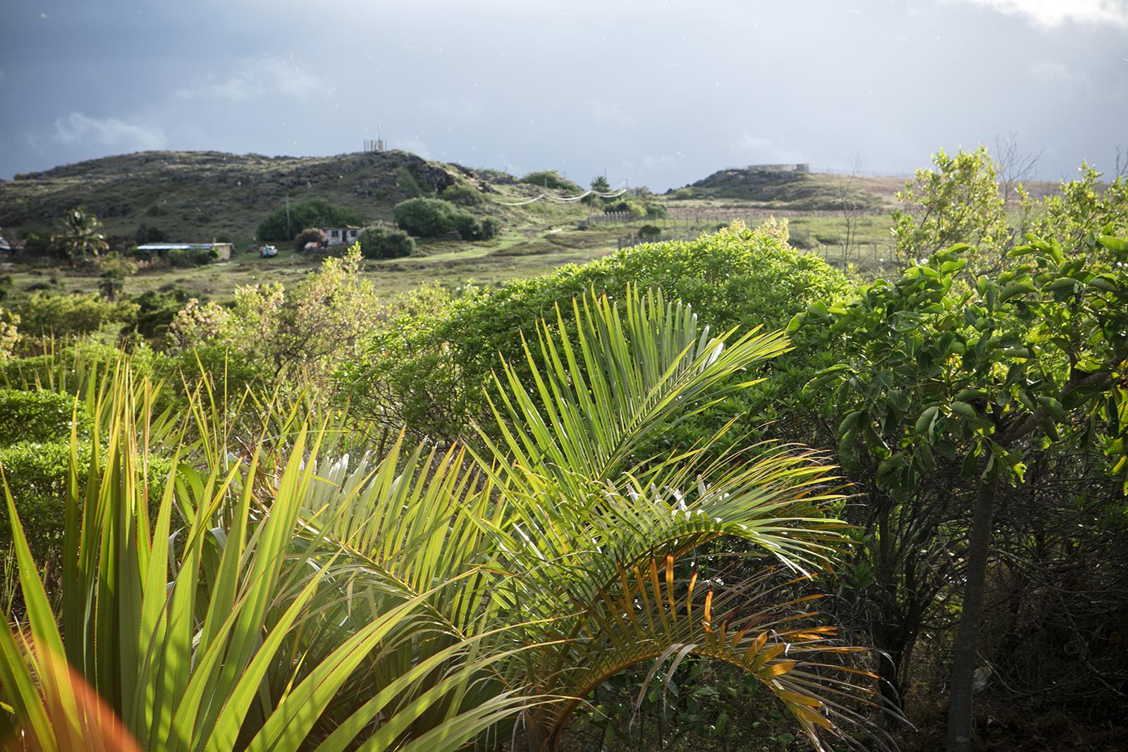 Que voir à Rodrigues centre de l'île