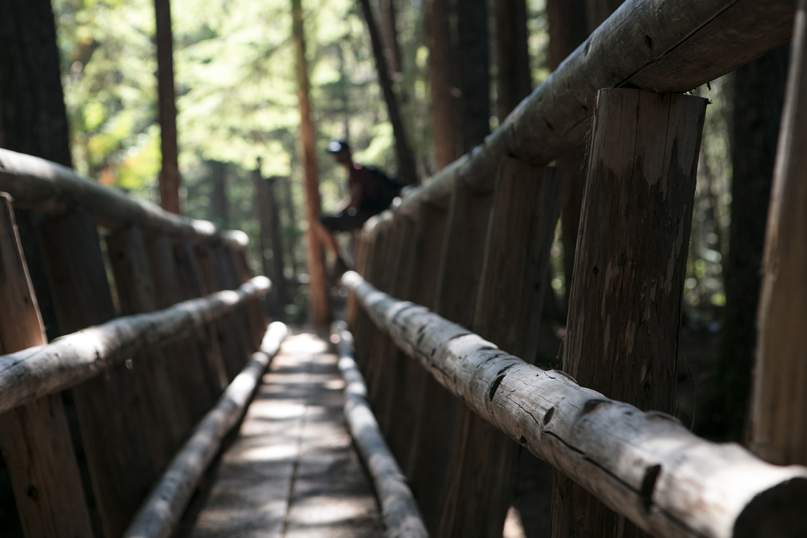 info randonnée Ramona falls oregon
