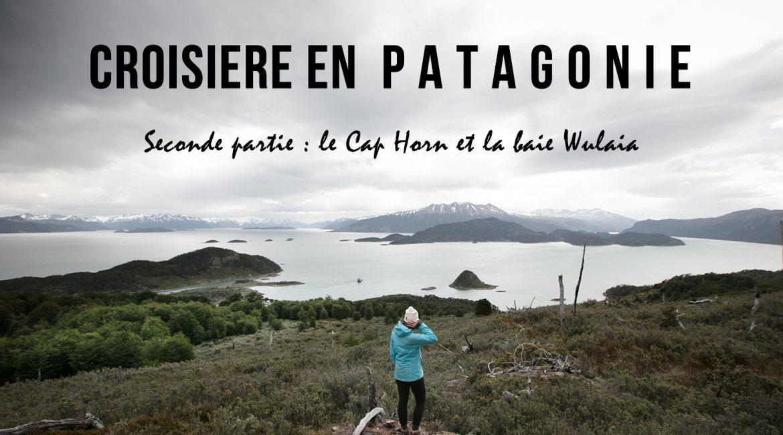 Croisière aux confins de la Patagonie #2 : le Cap Horn