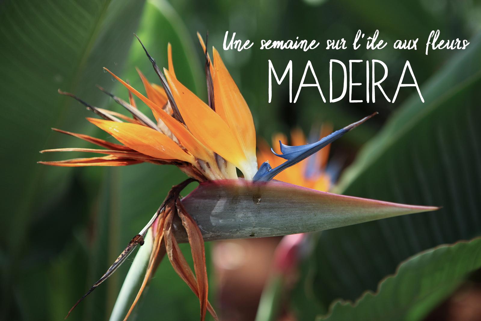 Une semaine à Madère : Lieux d'interêts, randonnées et carte