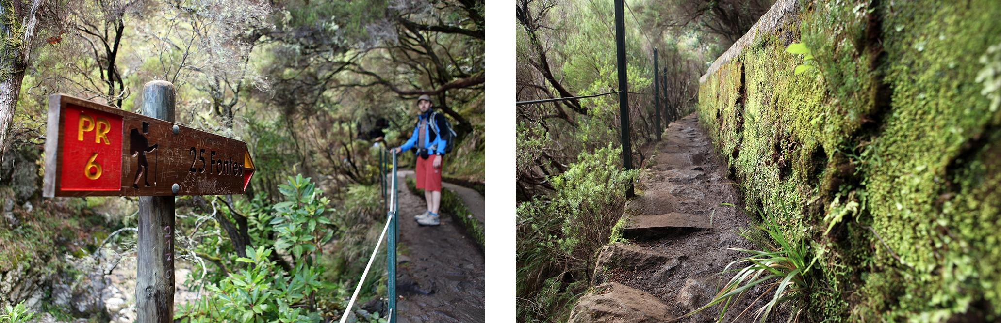 Levada des 25 Fontes, une des plus belles randonnées de Madère