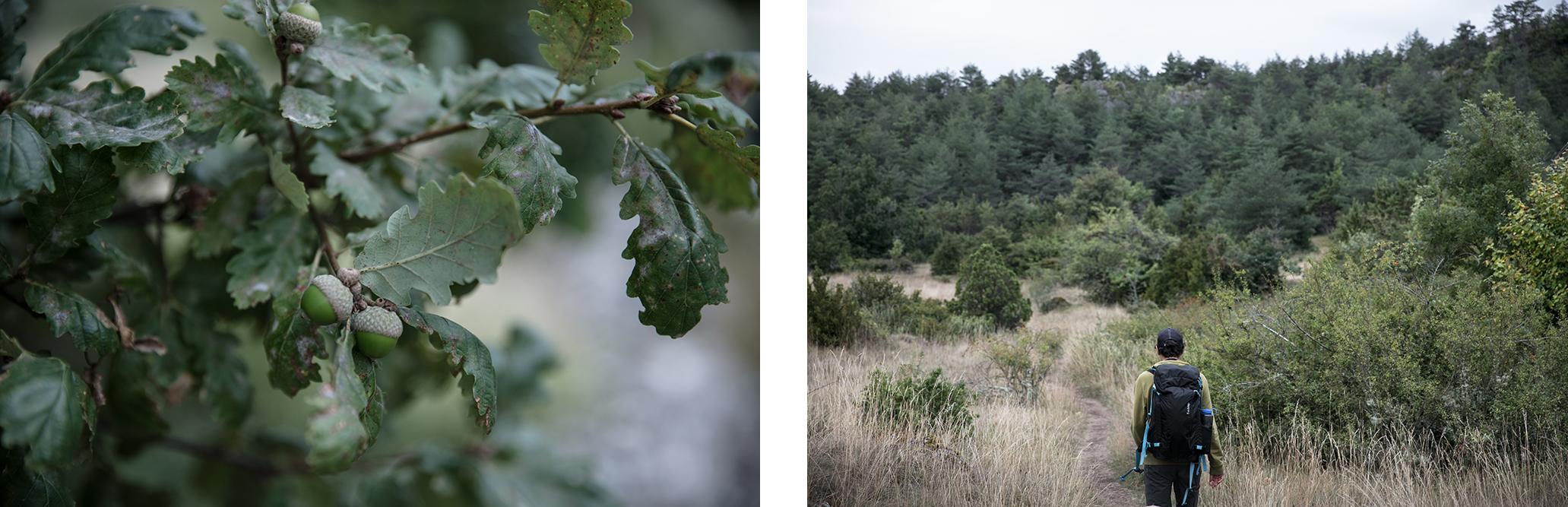 randonnée nature en Aveyron