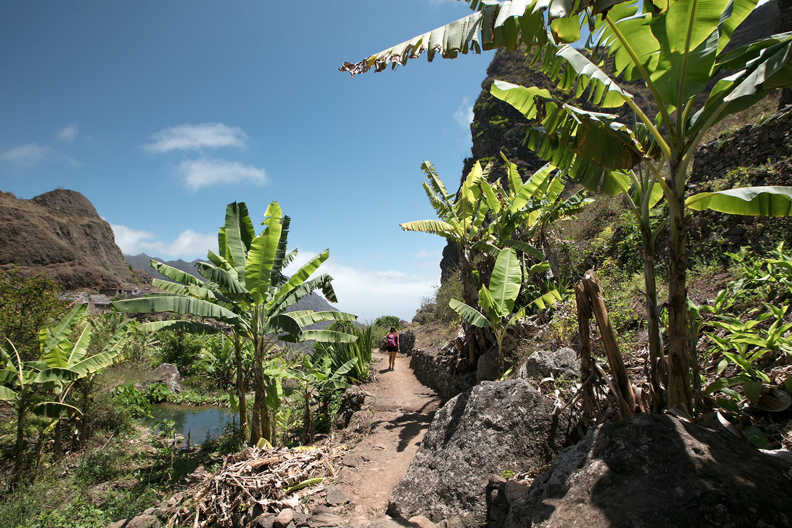Vallée verte au Cap Vert