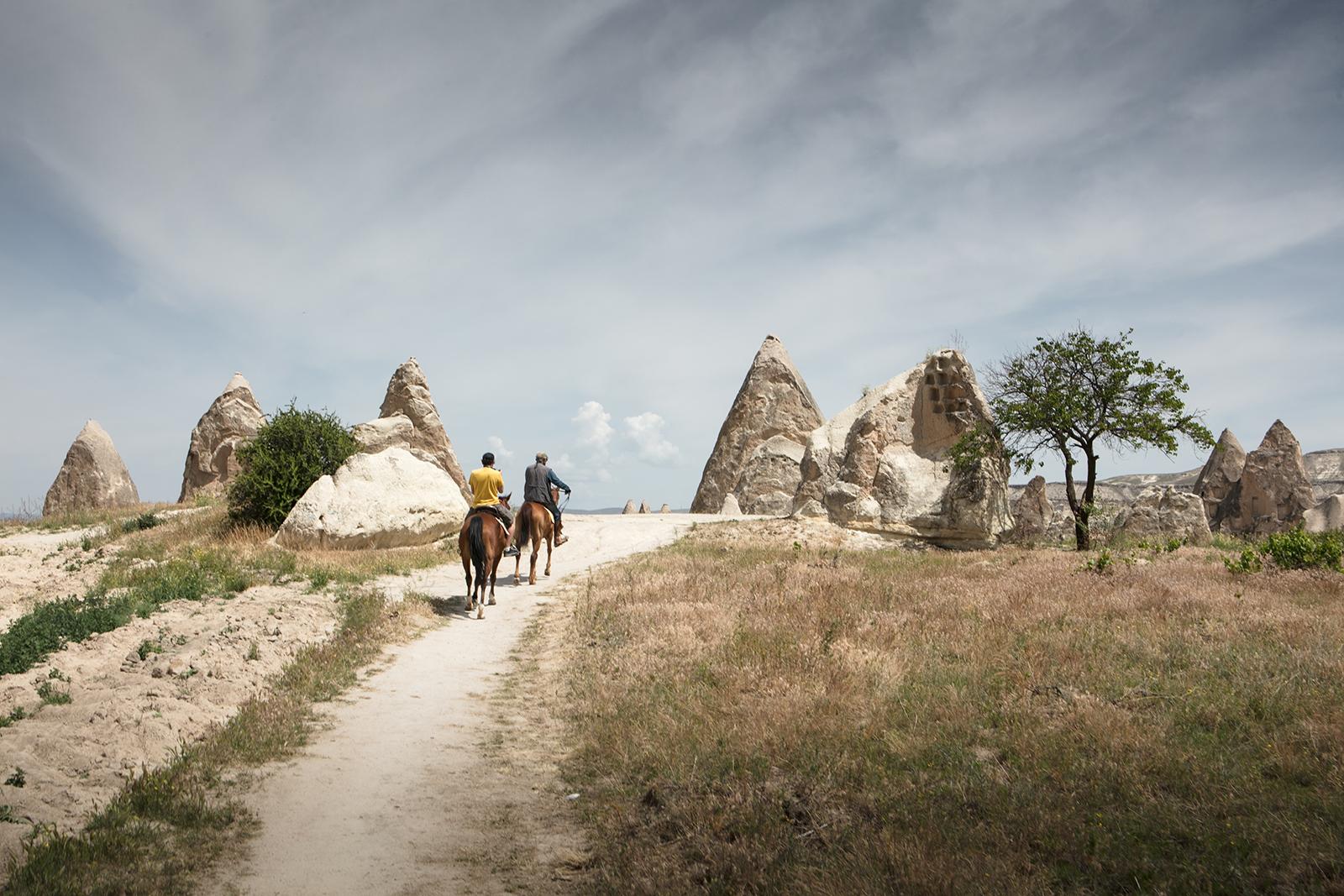 Cheval en Cappadoce