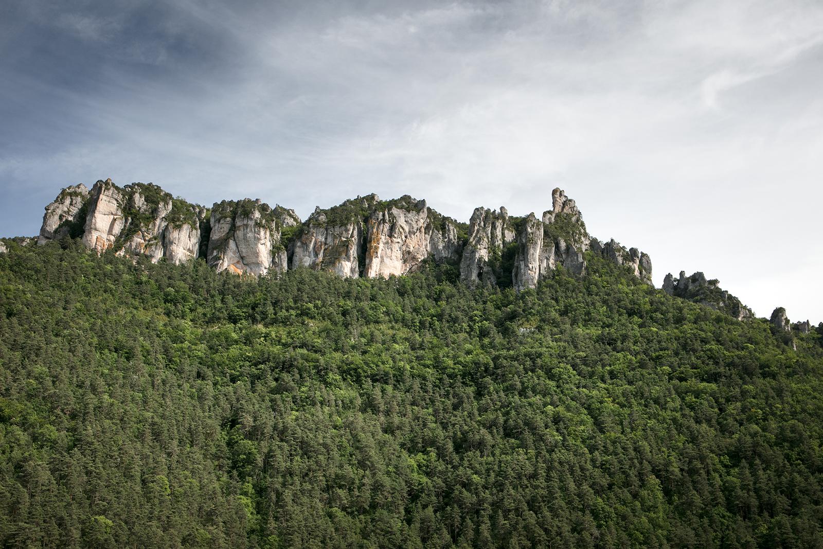 Paysage gorges Lozère