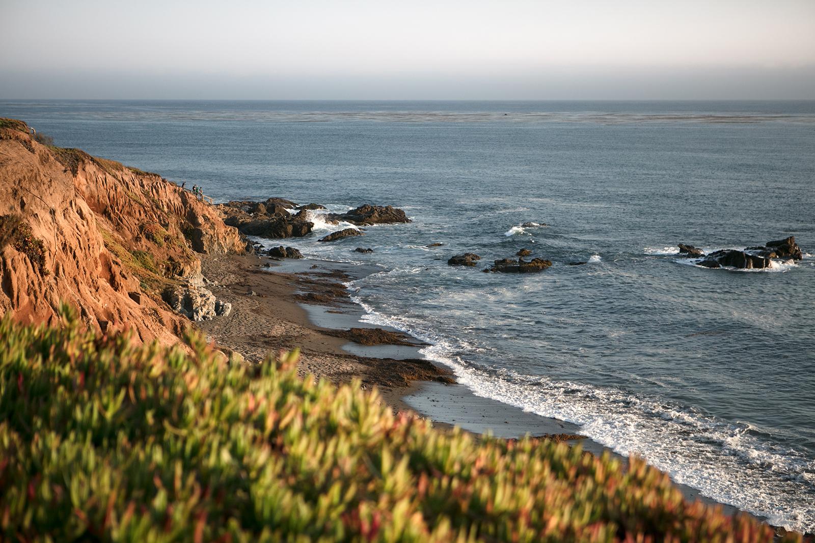 state parc côte californienne