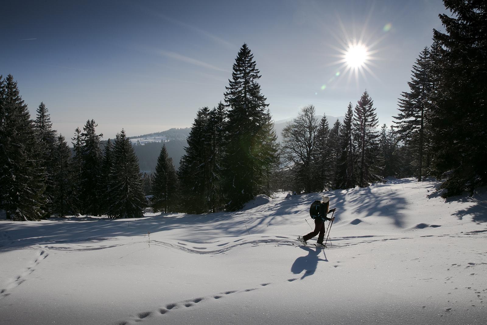 Faire du ski de randonnée en suisse
