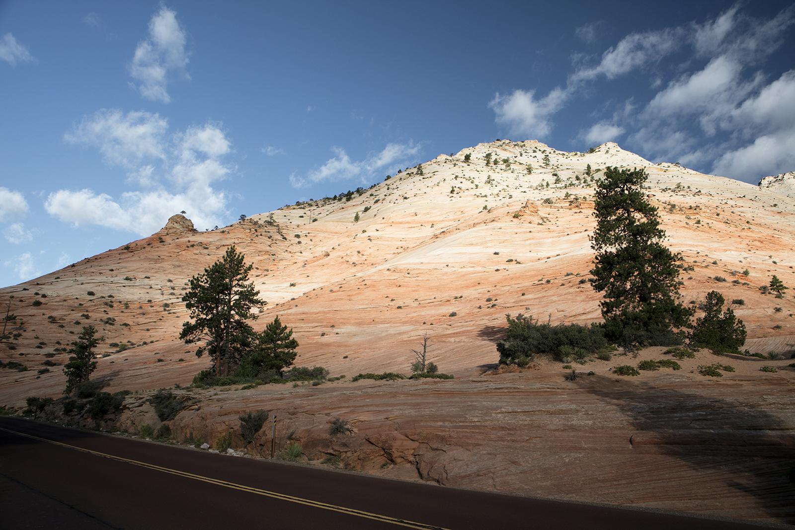 Route panoramique Zion National Park