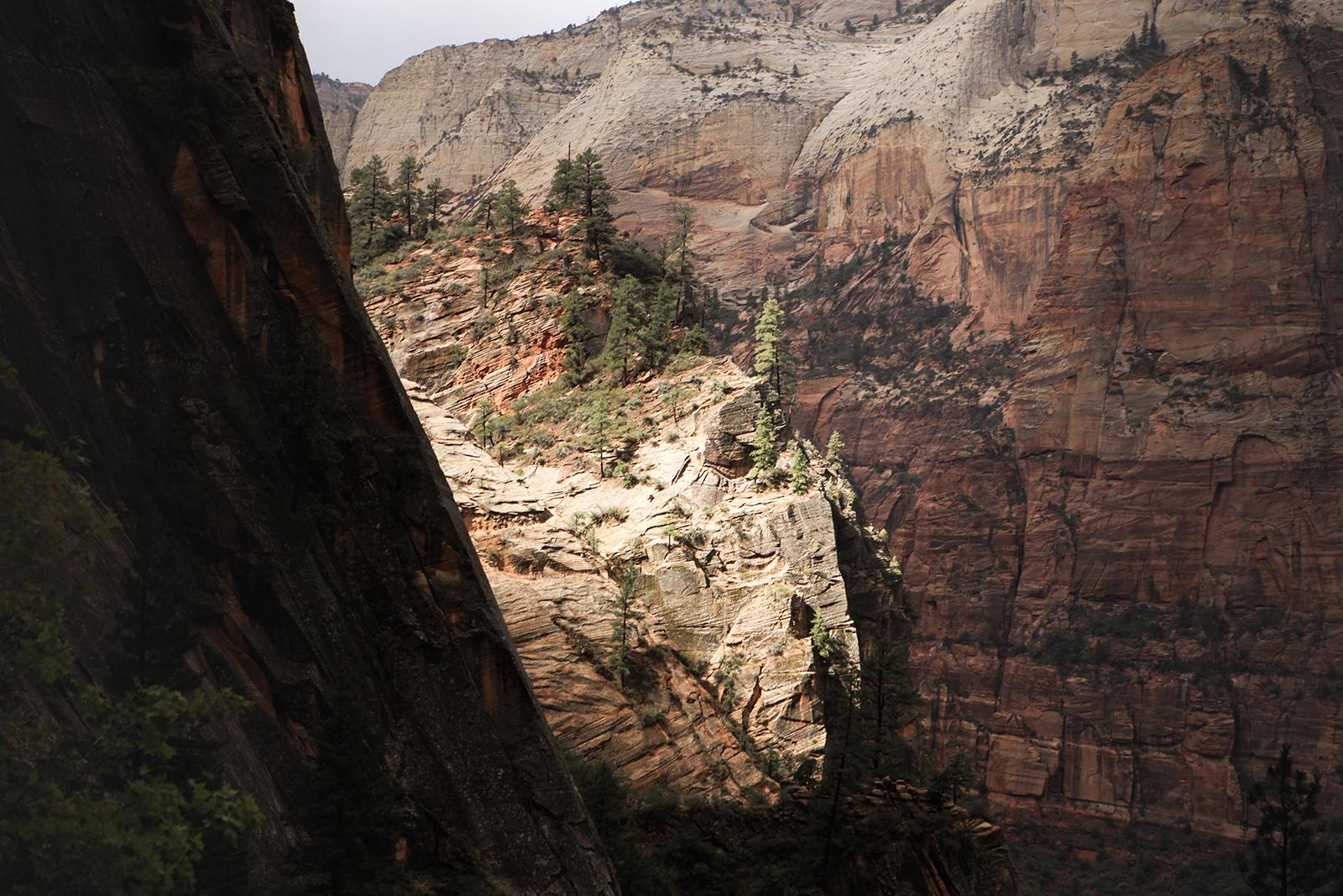 Randonner à Zion national park