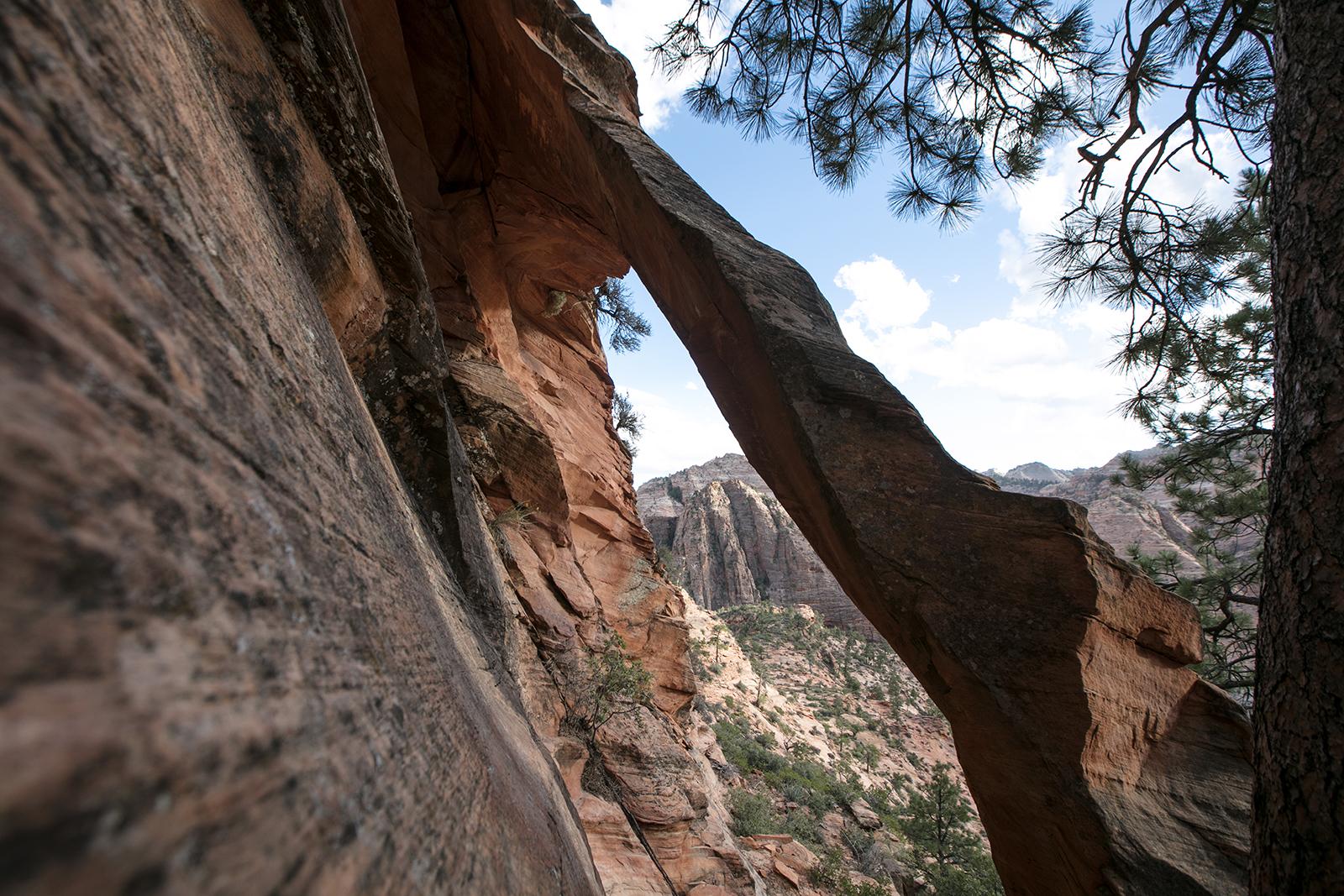 Voir une arche à Zion national park