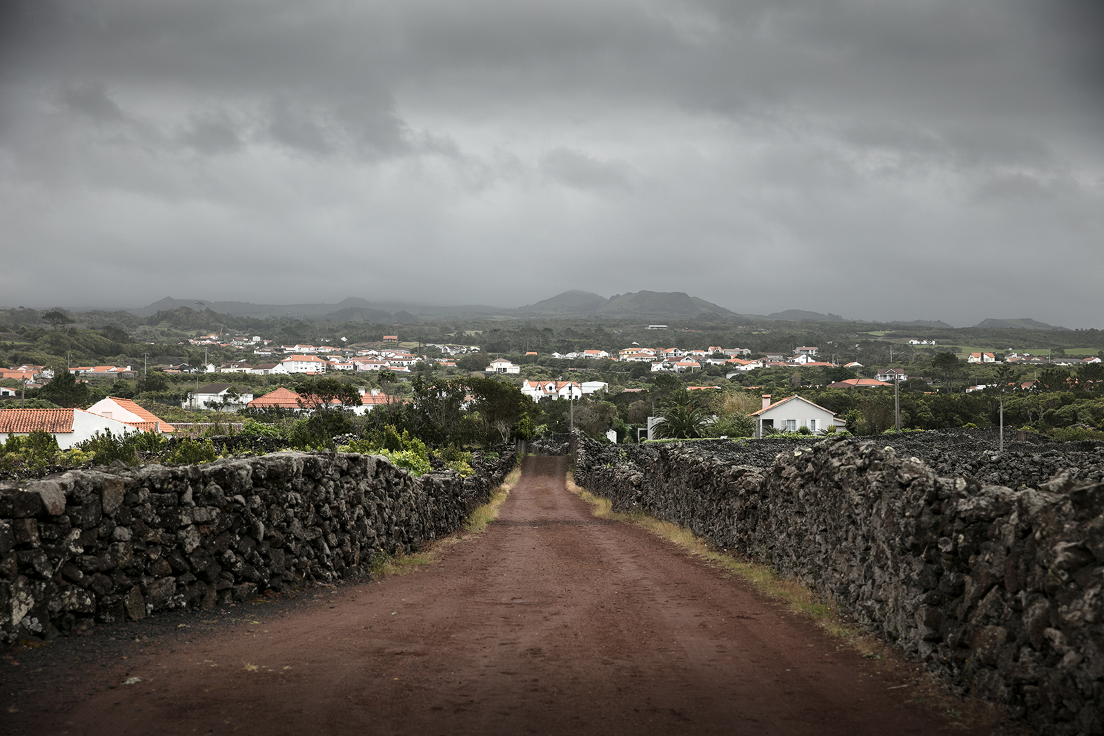 Paysage île de Pico