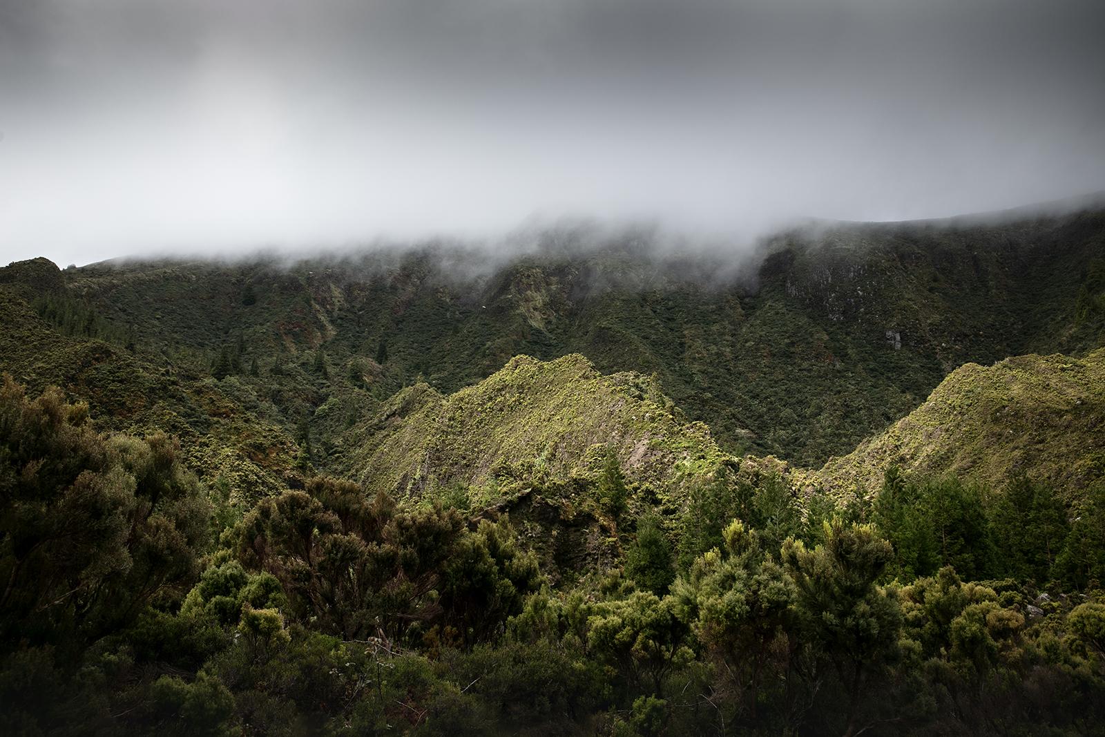Vallée embrumée Açores
