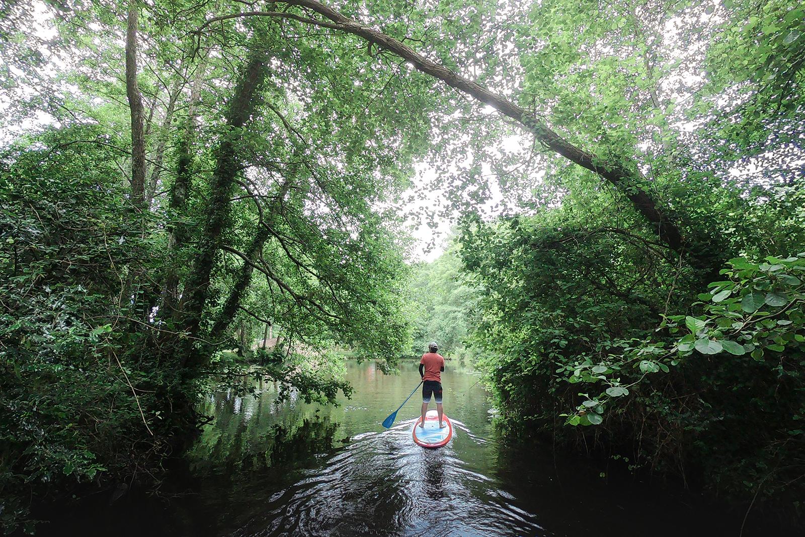 Balade en paddle sur le lac d'Azur