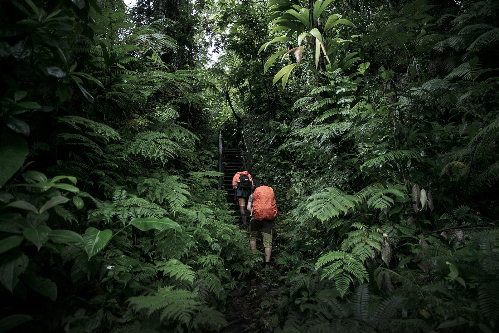 La plus belle randonnée de la Dominique