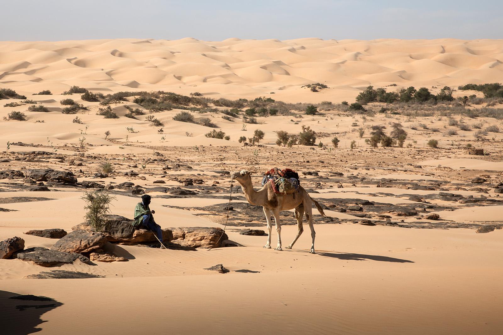 Nomade en Mauritanie