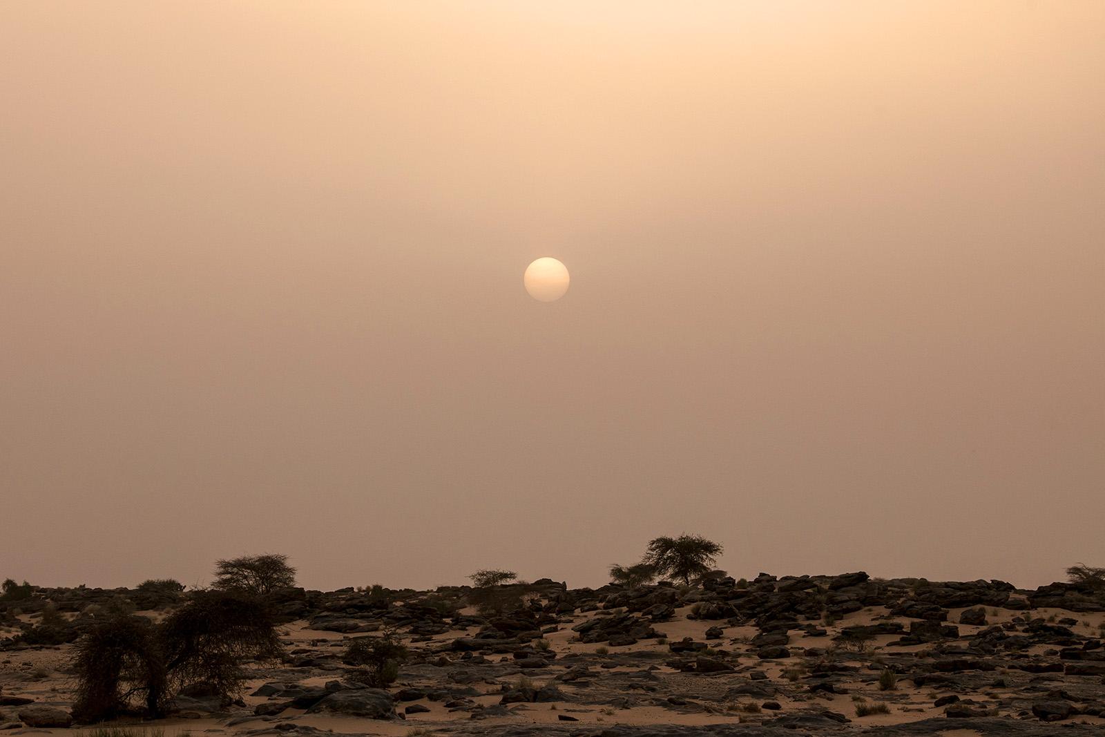 Trésor de Mauritanie