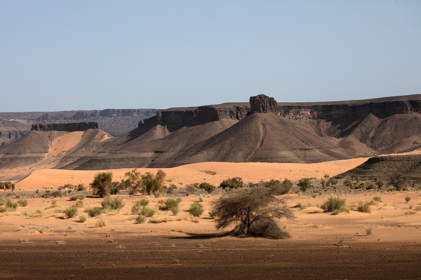 Voyager en Mauritanie