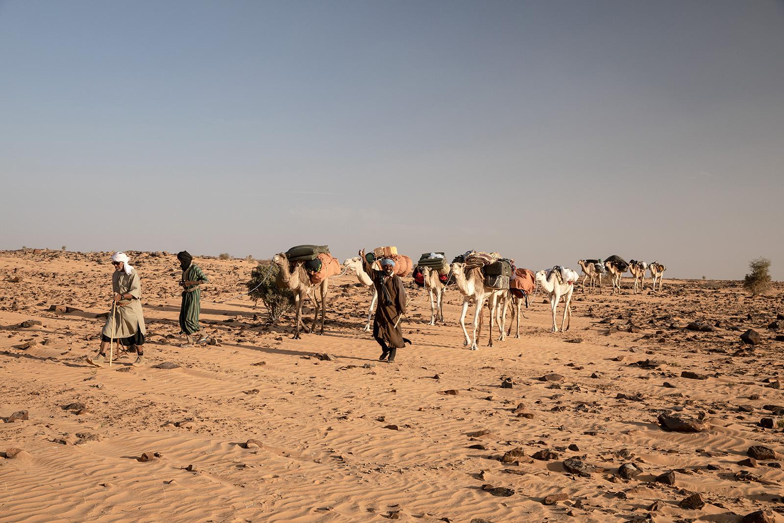 Randonnée chameliere Afrique