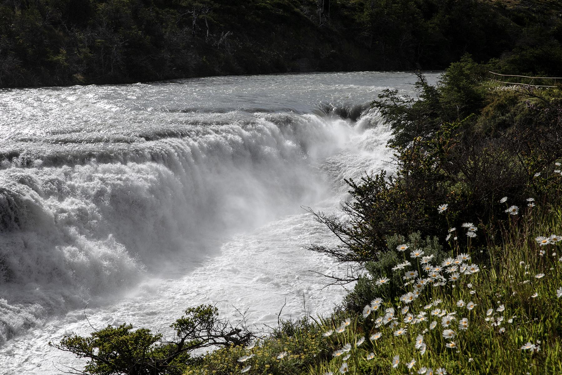 Cascade Parc Torres del Paine