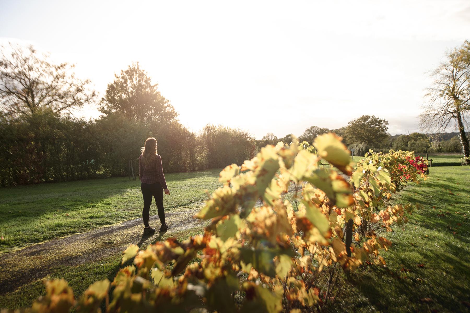 Visiter le pays de George Sand dans le Berry