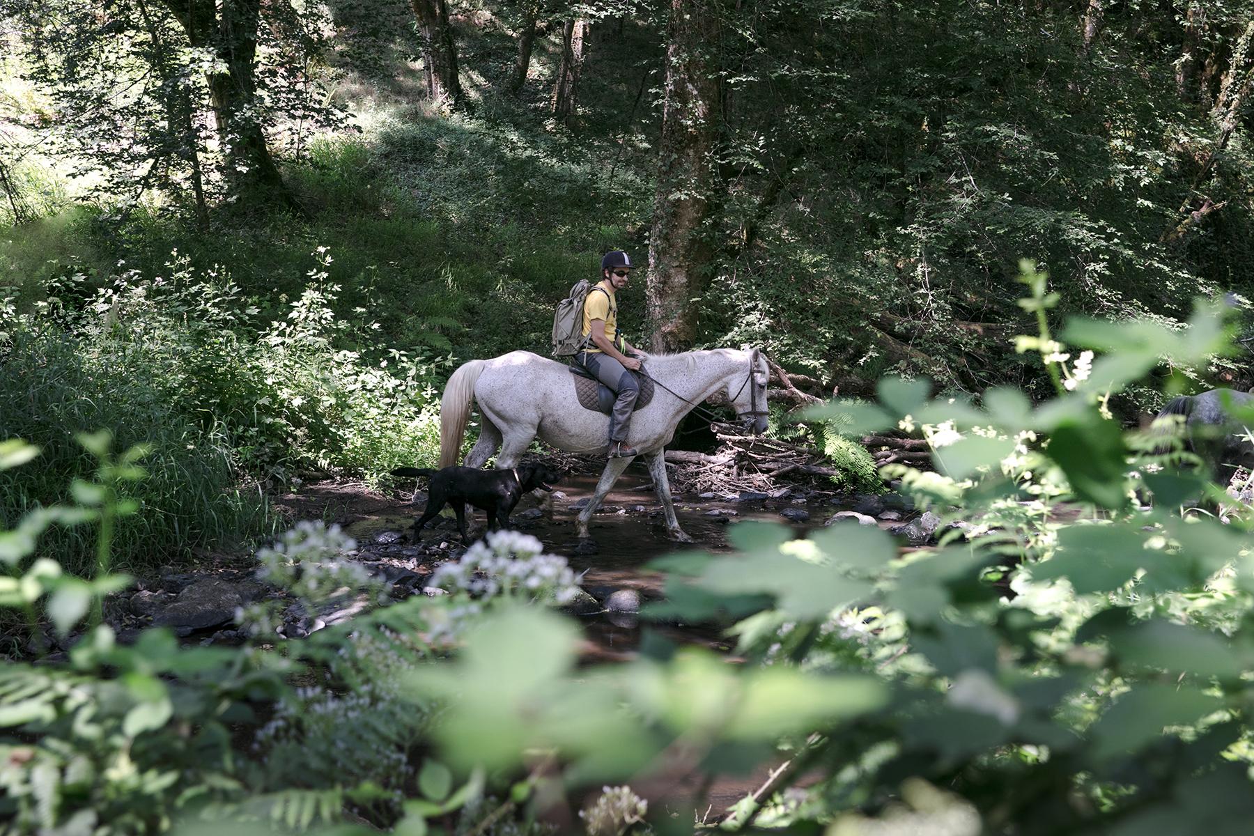 Randonnée equestre dans le Berry côté Indre