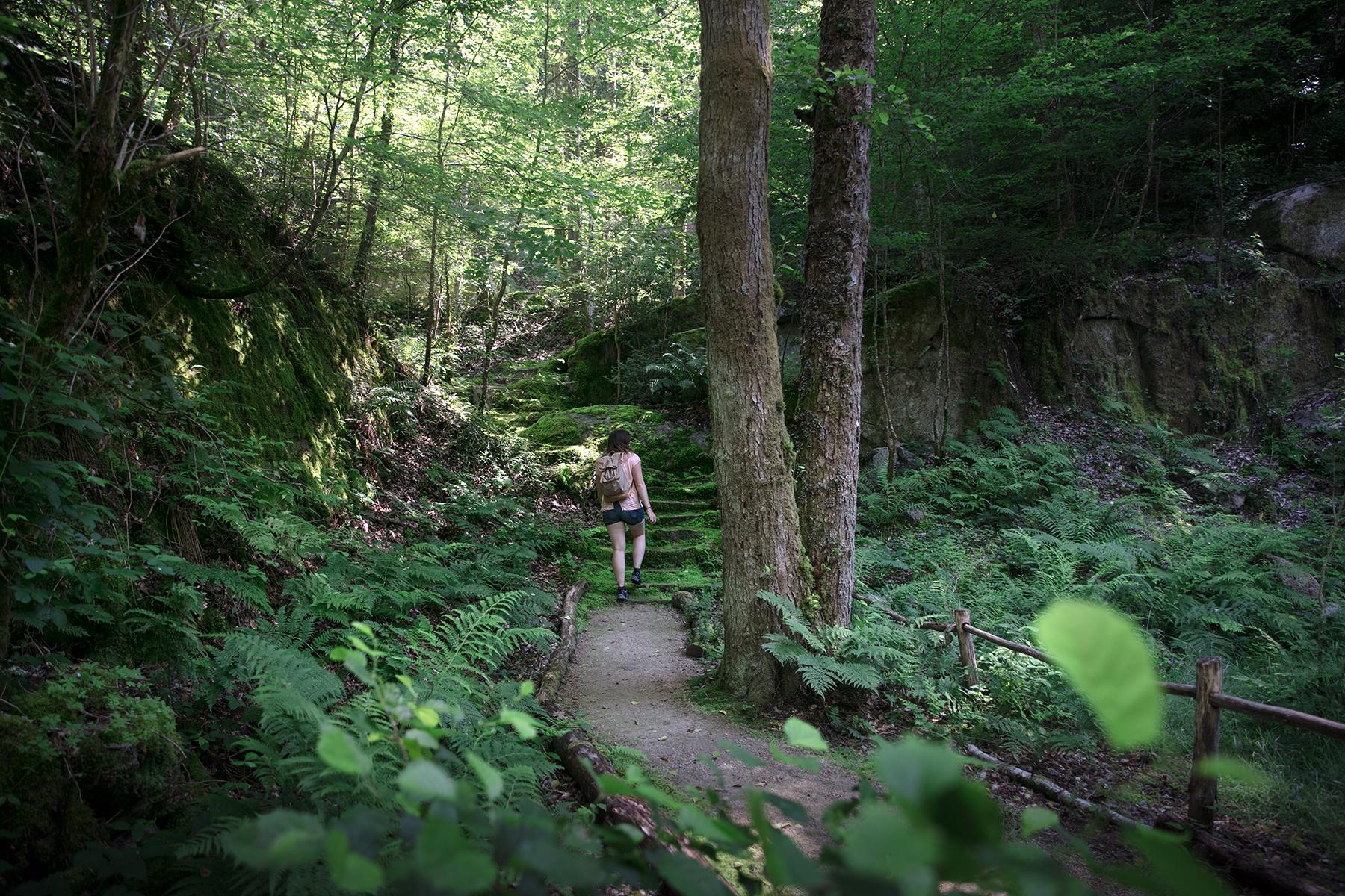 Idée de randonnée à faire dans le Berry, côté Indre