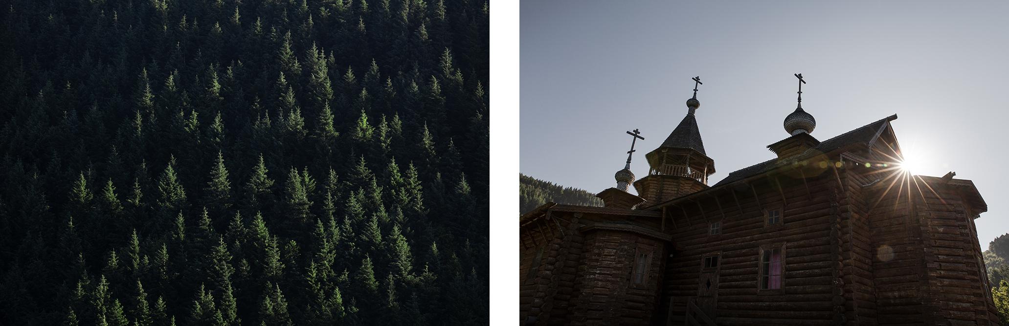 Forêts de l'Aveyron