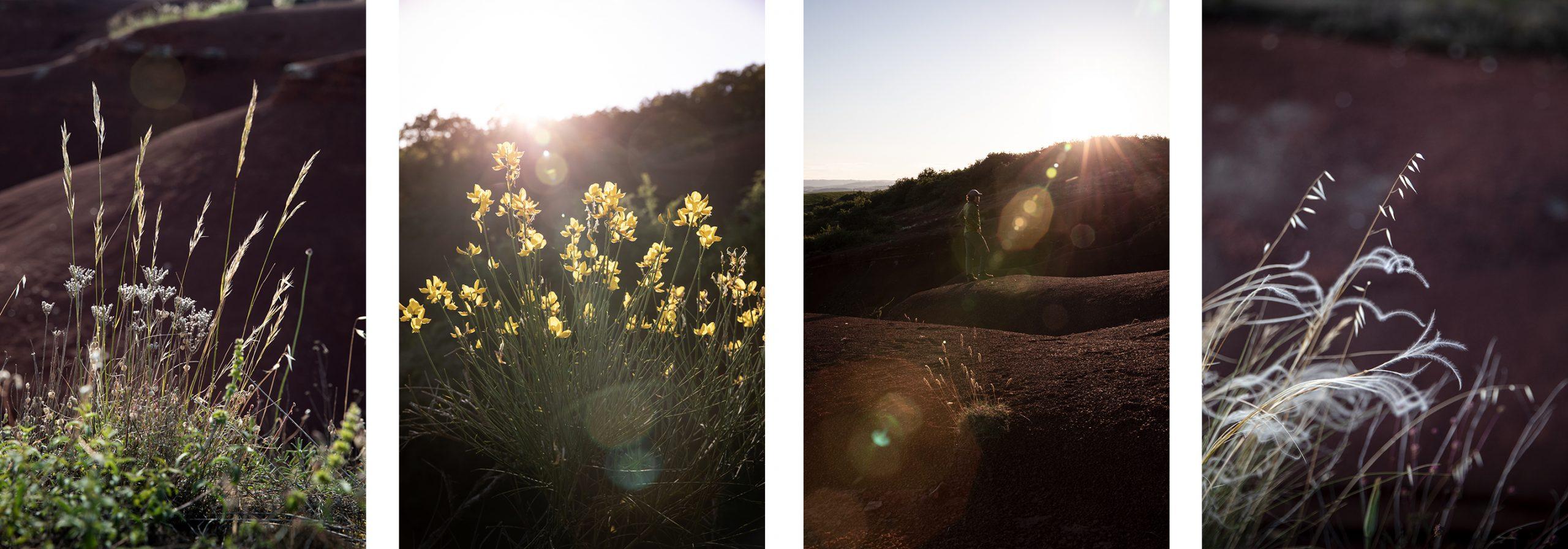 Aveyron version nature, que voir et que faire ?