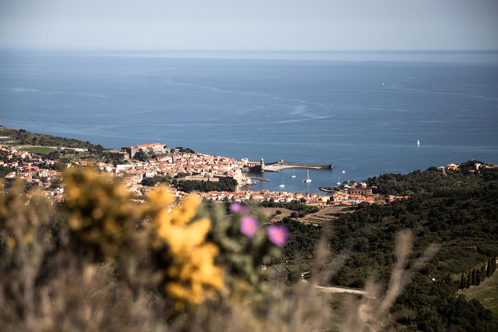 Panorama sur Collioure