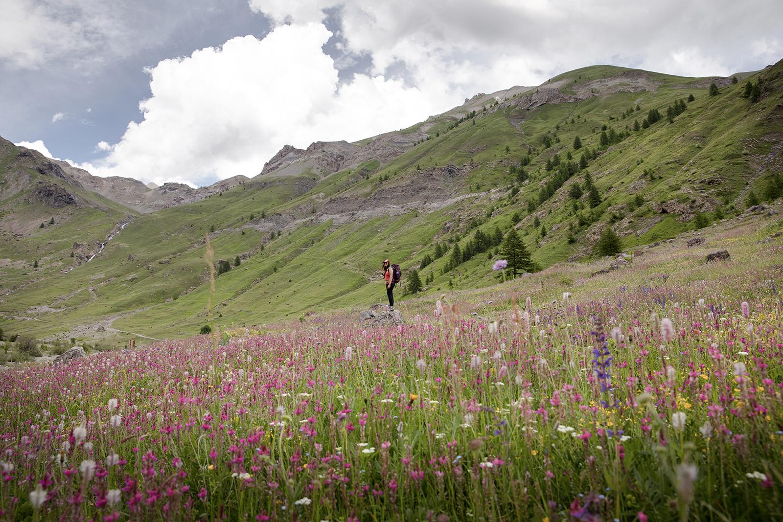 vallon de chambran Hautes Alpes